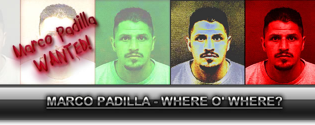 Marco Padilla: Still at large… for now